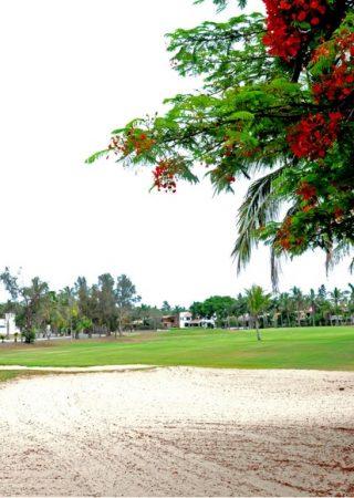 Moro Course